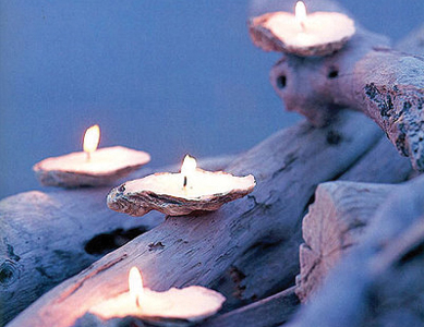 shell_candles